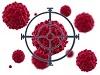 Препараты заменяющие защитную иммунную функцию организма| Medications replacing the protective immune body function
